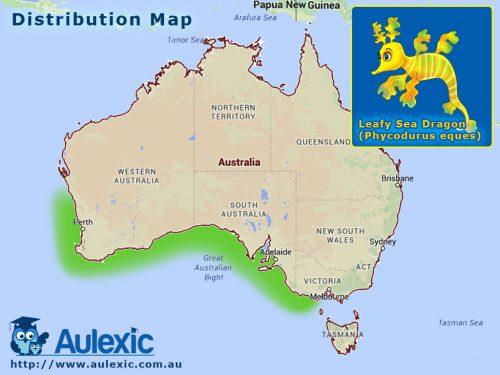 Leafy Sea Dragon - Distribution Map