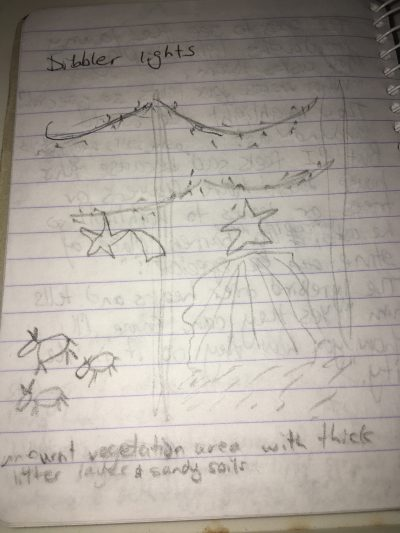 Our very rough sketch of how the dibblers created their light display.